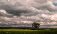 1_Baldwin-Hill-Storm-Clouds