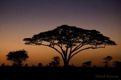 16_Lemala-Sunrise_0119